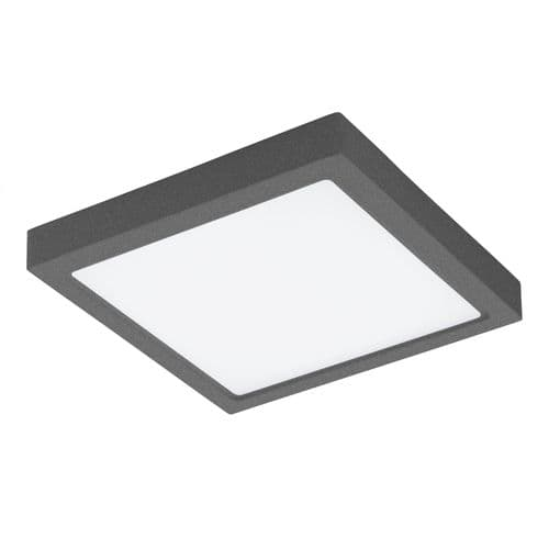 Eglo Outdoor 96495 Argolis Outdoor LED Wall / Ceiling Light Anthracite